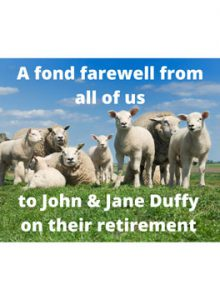 Sheep in sunny field with farewell message